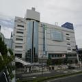tanashiasuta